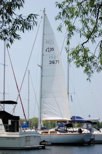 CheoyLee35 2008.Main.JPG